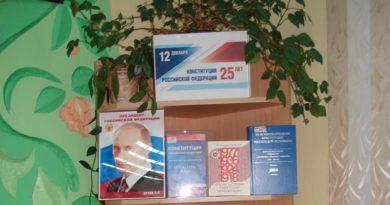 Конституции Российской Федерации 25 лет