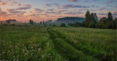 В Ивановскую область придет осенняя погода